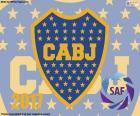 Boca Juniors, campione 2016-2017