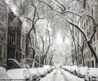 Strada coperta di neve