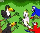 Cinque uccelli di Julieta Vitali