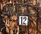Numero dodici