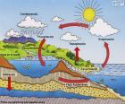 Il ciclo dell'acqua (es)