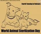 Giornata mondiale della sterilizzazione animale