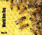 Giornata mondiale delle ape
