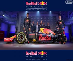 Rompicapo di Red Bull Racing 2016
