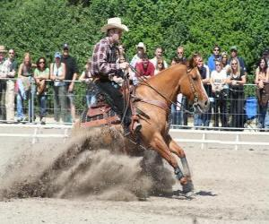 Rompicapo di Reining - monta western - Ride Cowboy