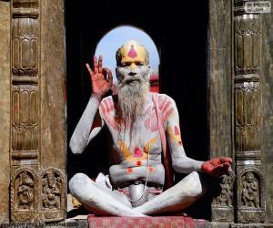 Rompicapo di Religione in India
