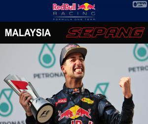 Rompicapo di Ricciardo, GP di Malesia 2016