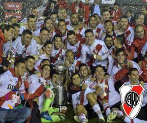 Rompicapo di River Plate Libertadores 2015