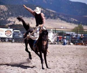 Rompicapo di Rodeo - Cowboy nella prova del cavallo con sella, cavalcando un cavallo selvaggio