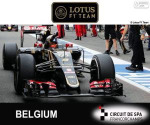 Rompicapo di Romain Grosjean, GP Belgio 2015