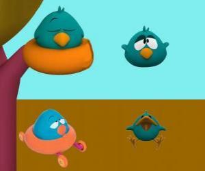 Rompicapo di Ronfotto è un uccello molto assonnato e irritabile