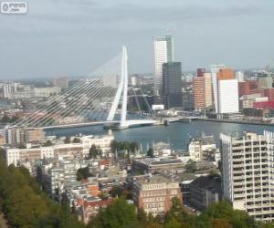 Rompicapo di Rotterdam, Paesi Bassi