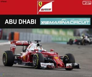 Rompicapo di S. Vettel, GP Abu Dhabi 2016