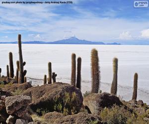 Rompicapo di Salar de Uyuni, Bolivia