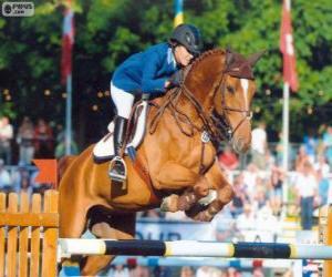 Rompicapo di Salto ostacoli. Il cavaliere e il cavallo in un salto