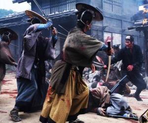 Rompicapo di Samurai combattimento diversi
