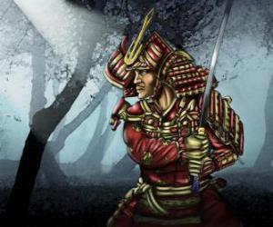 Rompicapo di Samurai con il vestito tradizionale