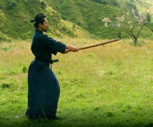 Rompicapo di Samurai di formazione
