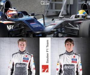 Rompicapo di Sauber F1 Team 2013