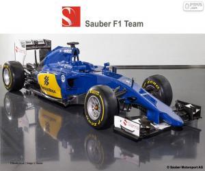 Rompicapo di Sauber F1 Team 2015