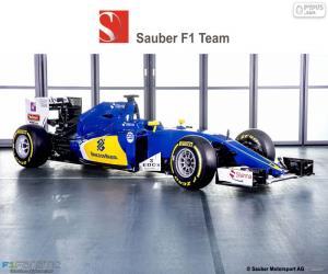 Rompicapo di Sauber F1 Team 2016
