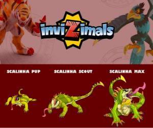 Rompicapo di Scalinha in tre fasi Scalinha Pup, Scalinha Scott e Scalinha Max, Invizimals