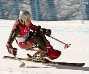 Rompicapo di Sciatora paralimpica nella competizione di slalom