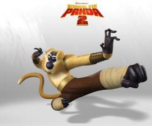 Rompicapo di Scimmia è acrobatico, giocoso, divertente, imprevedibile, veloce ed energico.