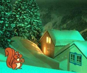 Rompicapo di Scoiattolo che mangia i dadi per la notte di Natale