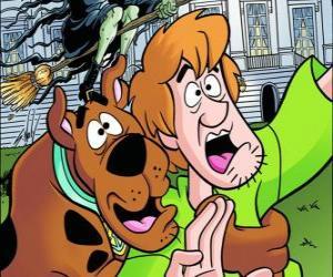 Rompicapo di Scooby-Doo e il suo amico Shaggy scappare spaventato