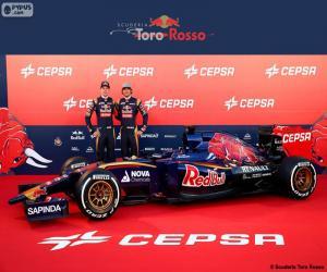 Rompicapo di Scuderia Toro Rosso 2015