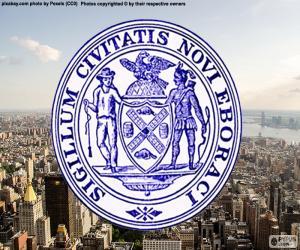 Rompicapo di Scudo di New York