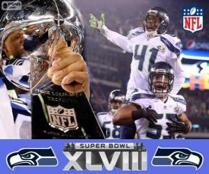 Rompicapo di Seattle Seahawks, Campioni Super Bowl 2014
