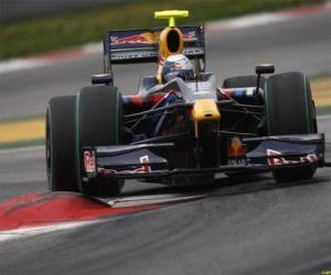Rompicapo di Sebastian Vettel pilota il F1