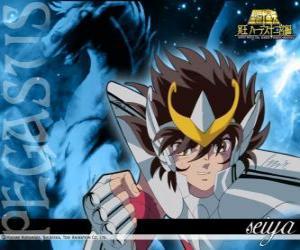 Rompicapo di Seiya de Pegasus