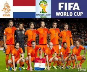 Rompicapo di Selezione dei Paesi Bassi, gruppo B, Brasile 2014