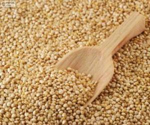 Rompicapo di Semi di quinoa