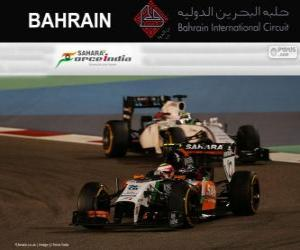 Rompicapo di Sergio Perez - Force India - Gran Premio Bahrain 2014, 3 ° classificato