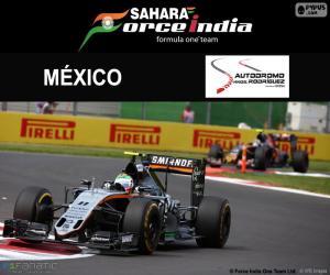 Rompicapo di Sergio Perez, GP Messico 2016