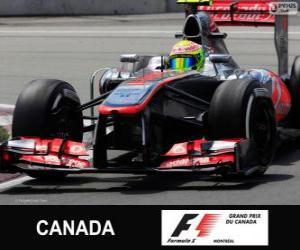 Rompicapo di Sergio Perez - McLaren - circuito Gilles Villeneuve, Montreal, 2013