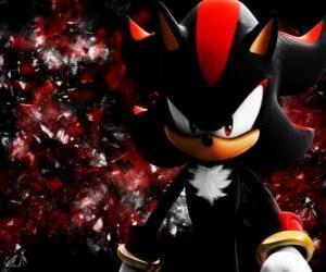 Rompicapo di Shadow è un riccio come Sonic, e il suo rivale
