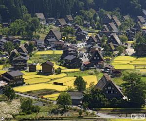 Rompicapo di Shirakawa-go, Giappone