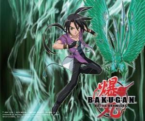 Rompicapo di Shun e Ventus suo Bakugan