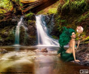 Rompicapo di Sirena in fiume