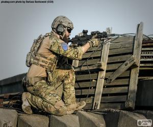 Rompicapo di Soldato