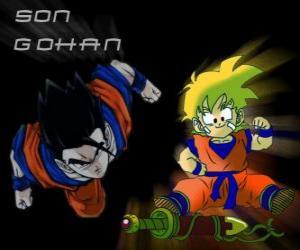 Rompicapo di Son Gohan, il figlio maggiore di Goku, guerriero, mezzo uomo e mezzo Saiyan.