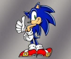 Rompicapo di Sonic il riccio, il protagonista principale dei giochi di Sonic di Sega