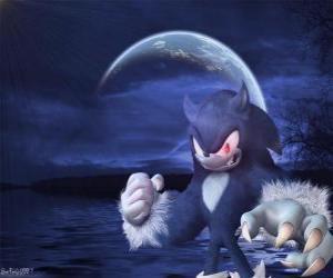 Rompicapo di Sonic the Werehog, l'ultima trasformazione di Sonic, di notte si trasforma in un lupo riccio