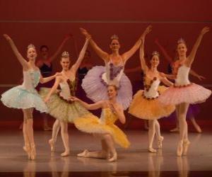 Rompicapo di Spettacolo di balletto