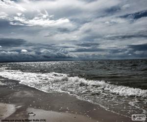 Rompicapo di Spiaggia del mare Baltico